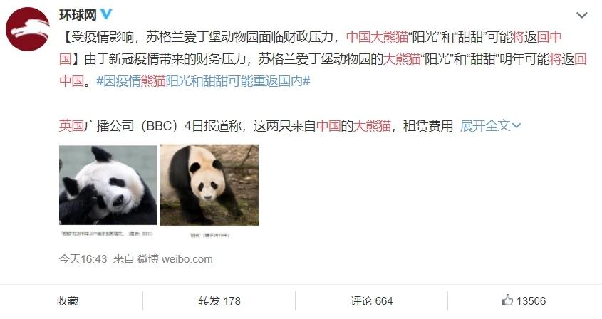 因疫情缺钱,英国动物园考虑将大熊猫送回中国