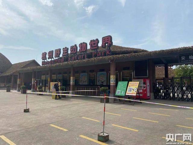 杭州3只未成年金钱豹外逃