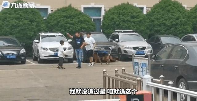 """多只淘汰警犬拍出万元高价 33万最高竞价警犬淘汰原因为""""衔取弱"""""""