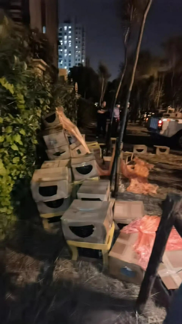 惨不忍睹!警方回应近百个宠物快递盲盒被遗弃,究竟是啥情况?